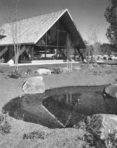 dick lewis 1964